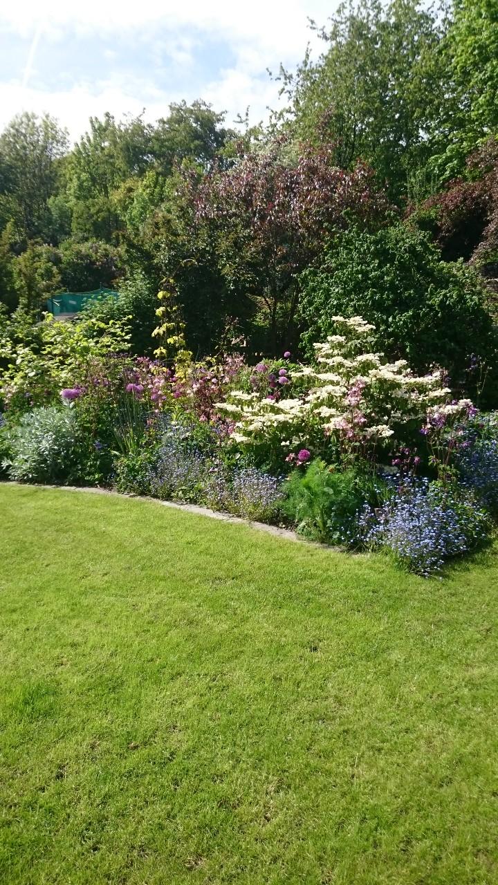 Communal garden after