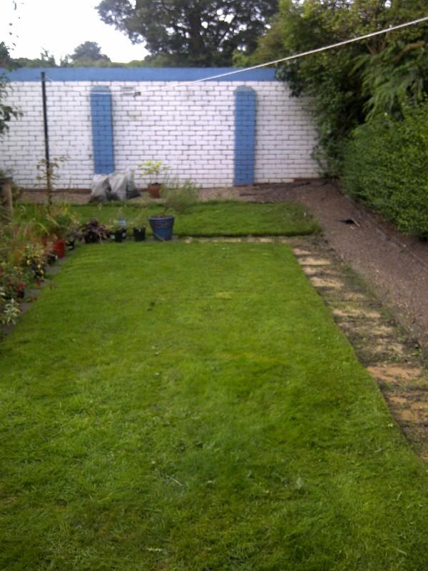 urban garden wall before